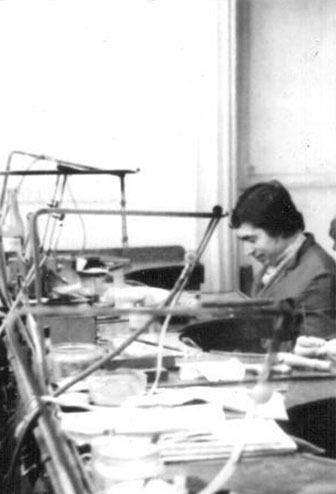 Stanislav Šulek st.
